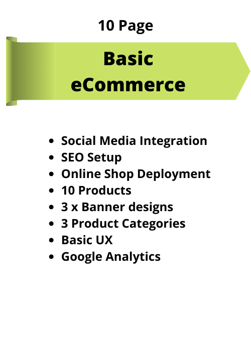 Website (e-Commerce)